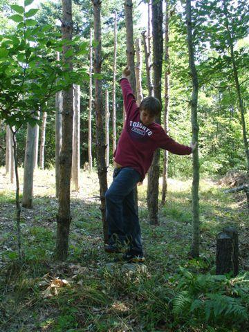 17-Celestiall-Harp-Forest-Woodhenge-setup-290