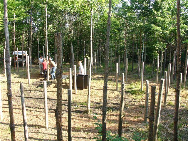 2-Celestiall-Harp-Forest-Woodhenge-setup-118a