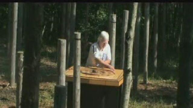 20-Celestiall-Harp-Forest-Woodhenge-spectrum-1039