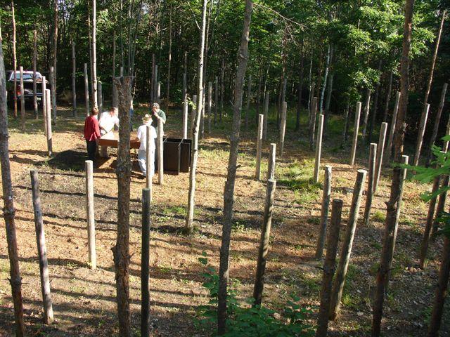 3-Celestiall-Harp-Forest-Woodhenge-setup-121a