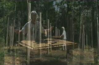 30c-Celestiall-Harp-Forest-Woodhenge-pyramid-38