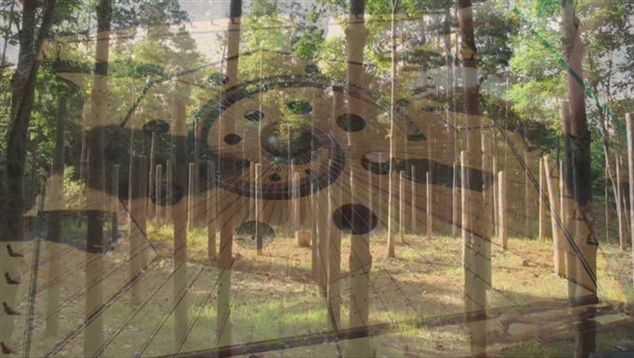 31a-Celestiall-Harp-Forest-Woodhenge-water-spirit-18512