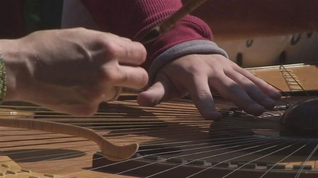 48-Celestiall-Harp-Forest-Woodhenge-kuku-28852