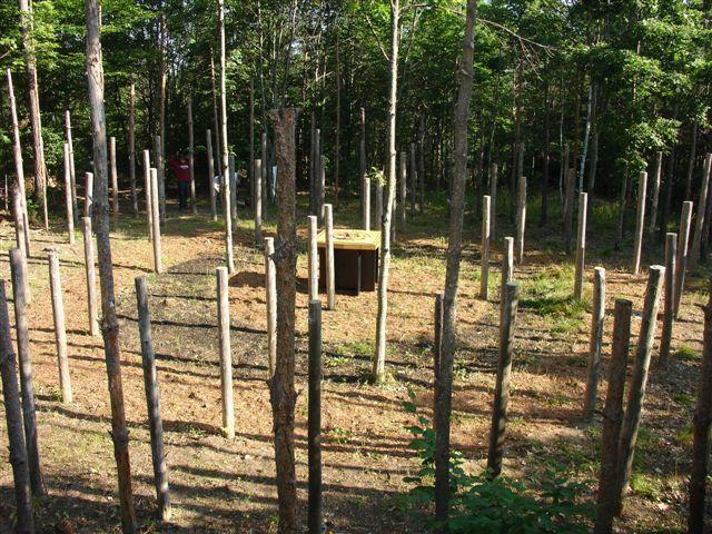 5-Celestiall-Harp-Forest-Woodhenge-setup-138a